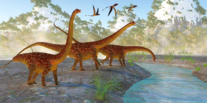 Diplodocus dinosaurs come down to a river for a morning drink as a flock of Dimorphodon reptiles fly nearby.