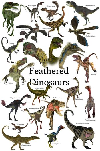 A collection of various feathered dinosaurs from different prehistoric periods of Earth's history.