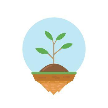 plant on island