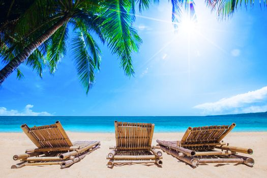 Beach beds under the palm trees