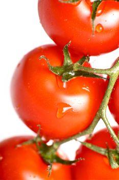 Tomatoes Freshness