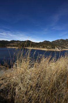 Dry Colorado