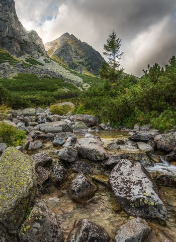 Mountain Landscape with a Creek
