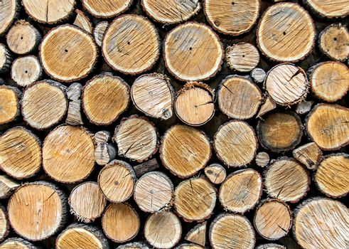 Background from dry wood logs stacked on each other