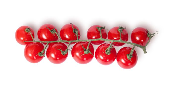 Cherry tomatoes on the stem top view