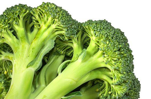Closeup inflorescence of fresh broccoli