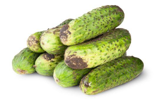 Fresh Dirty Cucumbers