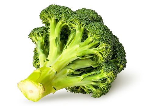Large inflorescences of fresh broccoli bottom view