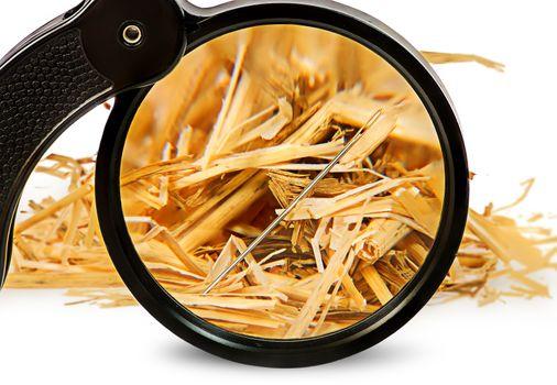 Magnifier enlarges a needle in haystack