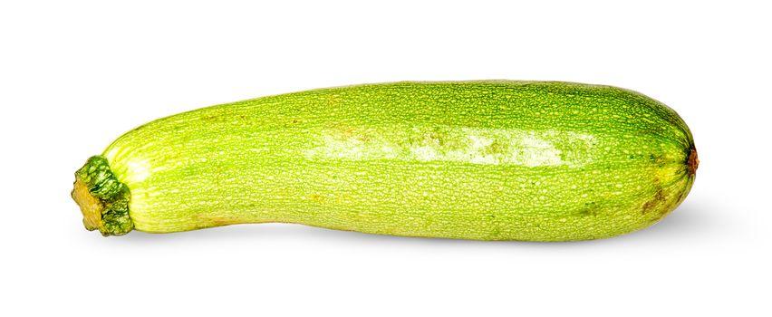 Single fresh courgette