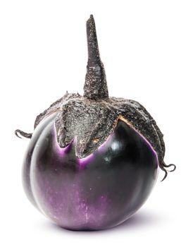 Single round ripe eggplant