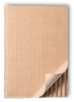Torn Piece Of Cardboard