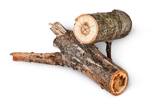Two poplar logs rotated