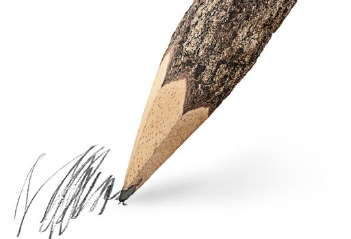 Writing unusual pencil in the form of logs