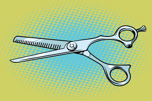 Metal Barber scissors