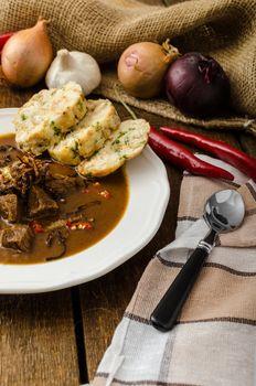 Classic Czech goulash with dumplings