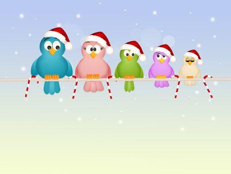 illustration of birds family at Christmas