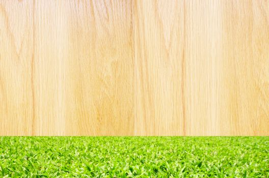 brown wooden with green grass background