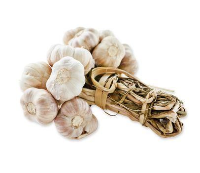 Bundle of dry garlic.
