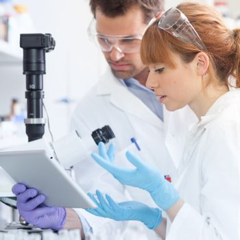 Health care researchers working in life scientific laboratory. Focused scientists looking at tablet computer screen evaluating and analyzing microscope image and discussing project data.