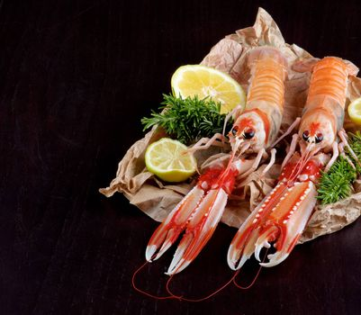 Big Raw Langoustines with Lime, Lemons Slices and Rosemary on Parchment Paper Cross Section on Black Wooden background