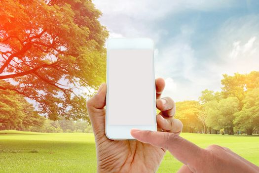 hand hold and touch screen smart phone on big trees in the garden with burst light