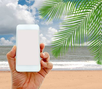 hand hold and touch screen smart phone on coconut palm trees with sky background