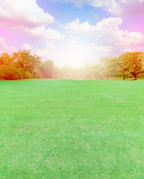lawn field in garden with burst light