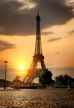Gorgeous Eiffel Tower