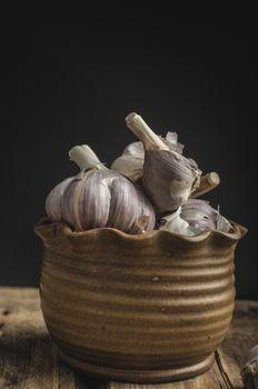 Homemade bio garlic