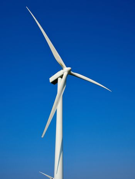 Wind turbines generating electricity alternative renewable energy