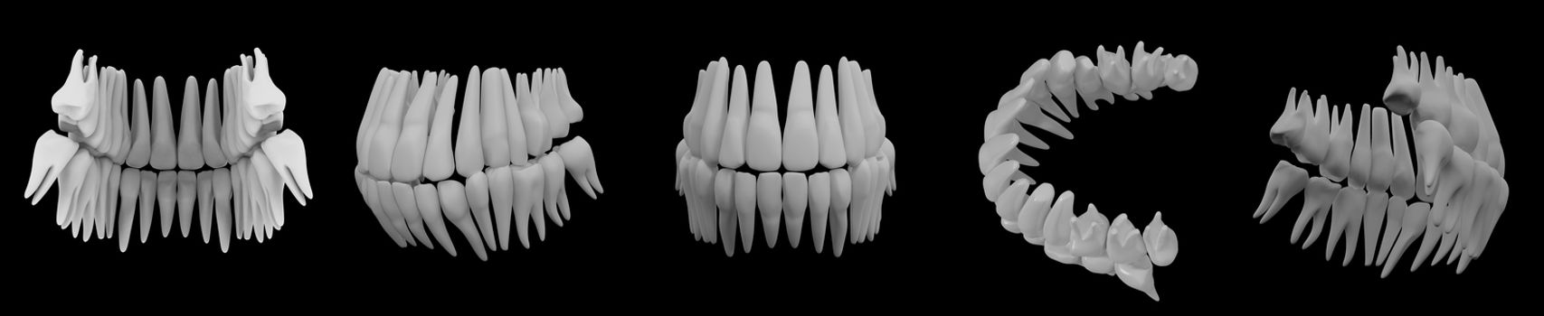 3d image of white teeth isolated on black