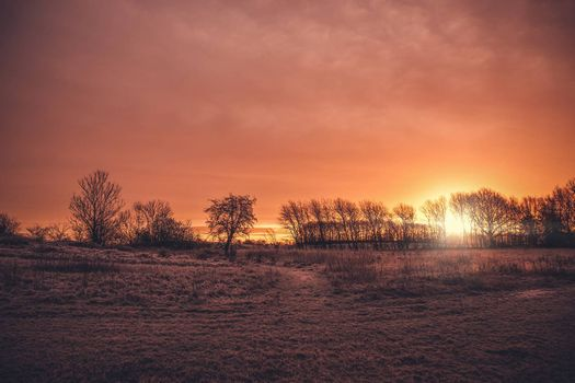Beautiful sunrise in a countryside landscape in the morning with tree silhouettes on a field with frost in the winter