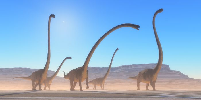 An Omeisaurus herd walks across a dry desert in their search for vegetation and water in the Jurassic Period.