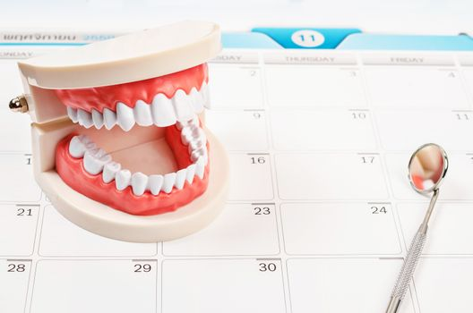 Calendar page and Dentist mirror tool and dentist demonstration teeth model.