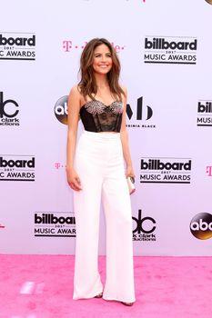 Erin Lim at the 2017 Billboard Awards Arrivals, T-Mobile Arena, Las Vegas, NV 05-21-17