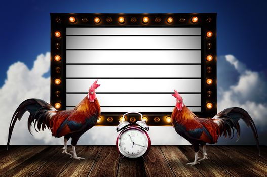 Morning concept, Chicken with message board with light bulb decorate