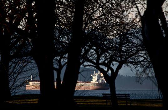 Cargo Ships English Bay
