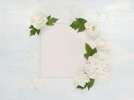 Scrapbooking page with white flowers