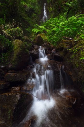 Waterfall in Gorbea Natural Park forest