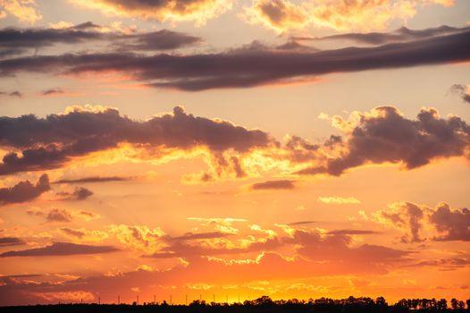 Beautiful dramatic sunset in orange tones over meadow