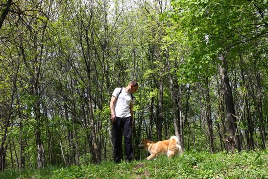Akita Inu puppy and young man playing in the forest
