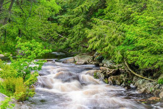 Rosseau River Scene