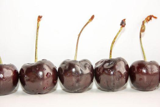Cherry dark glossy with glare
