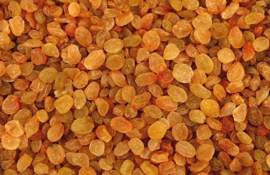 White grape small raisin close up background