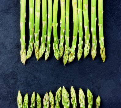 Arrangement of Fresh Asparagus Sprouts closeup on Black Slate background