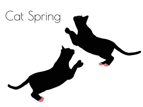 EPS 10 vector illustration of cat silhouette in Spring Pose