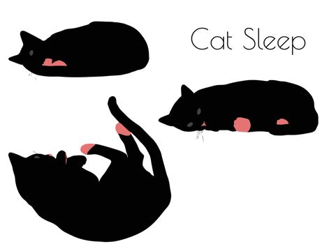 EPS 10 vector illustration of cat silhouette in Sleep Pose