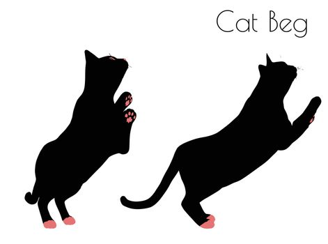 EPS 10 vector illustration of cat silhouette in Beg Pose