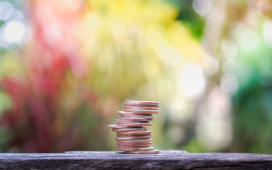 coins stacks grow on nature background